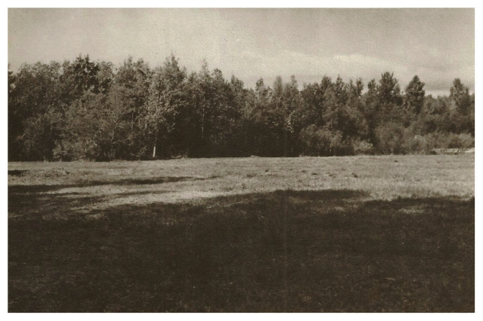 1 (2) postcard