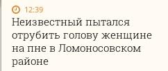 """Unknown man tries to behead woman on stump in Lomonosov District"""