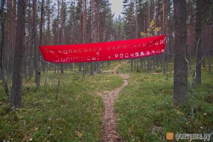 samodel_banner