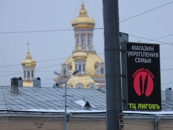 Cupolas of the Cossack Exaltation of the Holy Cross Cathedral, St. Petersburg, November 18, 2016. Photo by the Russian Reader