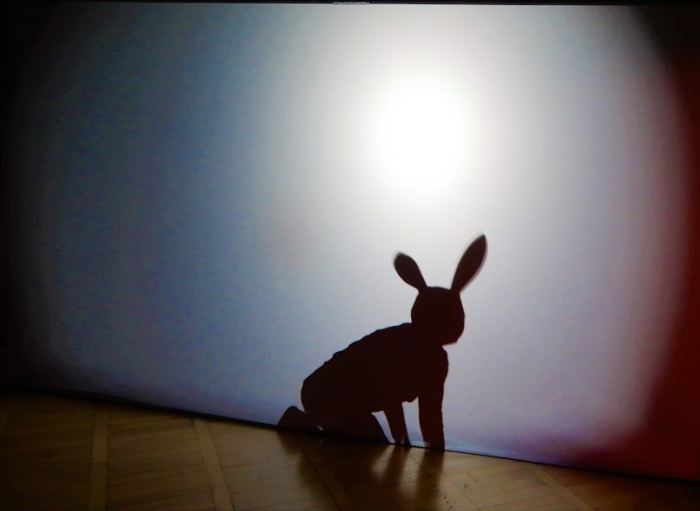 markischer bunny